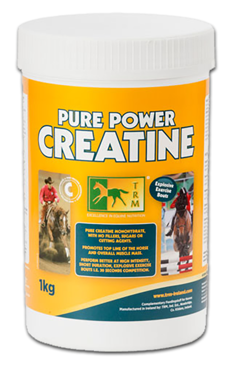 אבקת כח קריאטין Pure Power Creatine